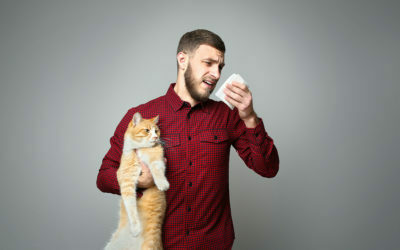 5 Tips for Allergy Sufferers Exploring Pet Ownership